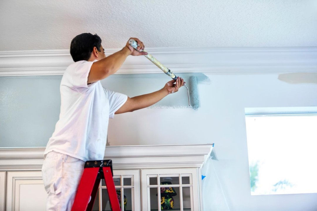How are diatomaceous earth paints different?